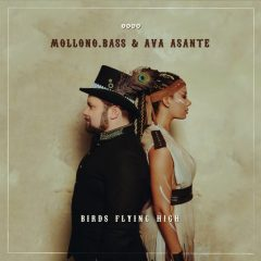 Mollono.Bass & Ava Asante - Birds Flying High
