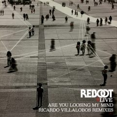 rebot-Are You Loosing My Mind-ricardo-villalobos